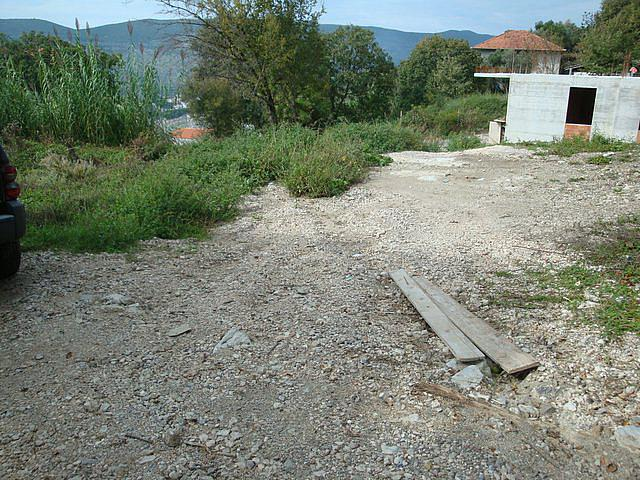 Plot in Topla