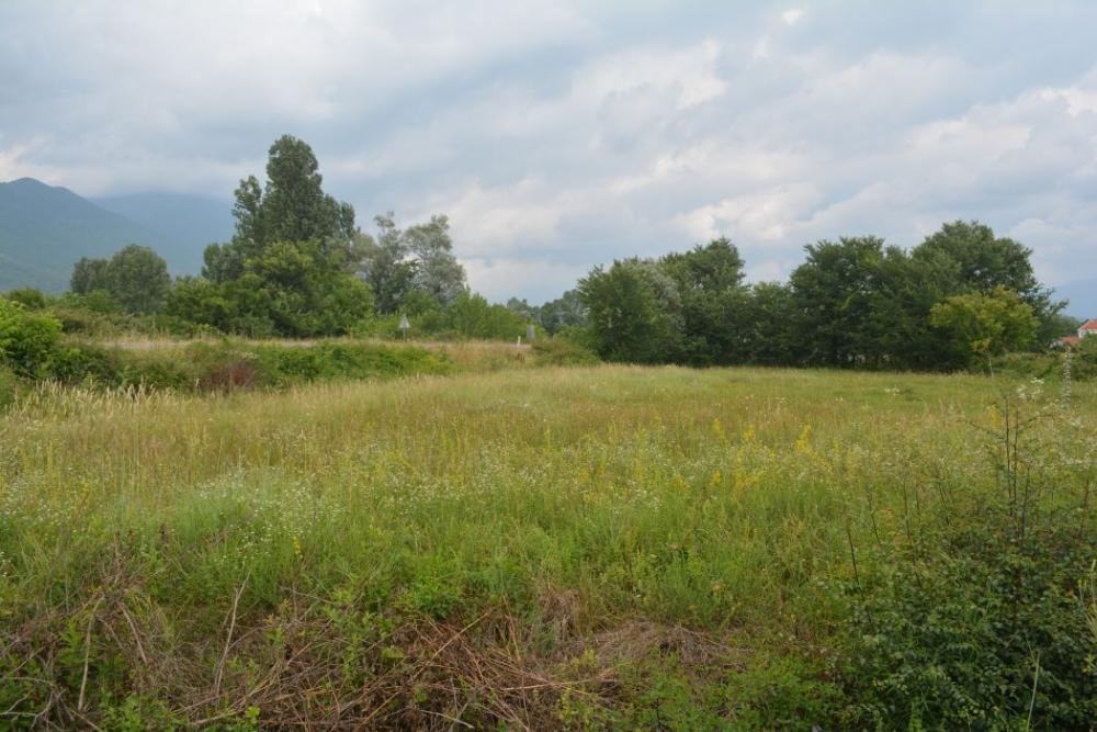 Plot of land in Danilovgrad