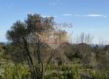 Budva Krimovica'da satılık deniz manzaralı arsalar Arsaların alanı: 508m2 - 30500 euro 517m2 - 31.