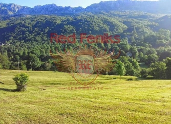 Scenic plot with an area of 22 050м2 and 1 hectare of forest is for sale.