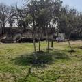 Urbanized Plot Near Tivat, Karadağ Arsa Fiyatları, Budva da satılık arsa, Kotor da satılık arsa