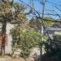 Krasici'de Müstakil Ev, Karadağ satılık ev, Karadağ satılık müstakil ev, Karadağ Ev Fiyatları