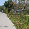 Bijela'da İmarlı Arsa, Montenegro da satılık arsa, Montenegro da satılık imar arsası