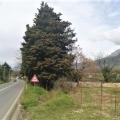 Satılık Radanovici'de toplam 1600 m2 alana sahip bir arsa.