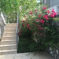 Nice house in Sutomore, Montenegro real estate, property in Montenegro, Region Bar and Ulcinj house sale