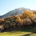 Big plot in Bar, Montenegro real estate, property in Montenegro, buy land in Montenegro