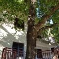 Boka Kotor Körfezi kıyısında şirin bir ev, Dobrota satılık müstakil ev, Dobrota satılık müstakil ev, Kotor-Bay satılık villa