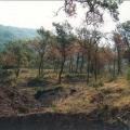 Spacious urbanized plot in Przno, Kujace, Karadağ da satılık arsa, Karadağ da satılık imar arsası