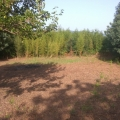 Urbanized plots in Kumbor near Porto Novi, building land in Herceg Novi, land for sale in Baosici Montenegro