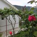 Magnificent House in Igalo, Karadağ Villa Fiyatları Karadağ da satılık ev, Montenegro da satılık ev, Karadağ satılık villa