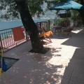 Cozy house on the shore of the Boka Kotor Bay, Montenegro real estate, property in Montenegro, Kotor-Bay house sale