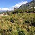 Blizikuce'de panoramik manzaralı arsa, Tivat satılık arsa, Herceg Novi satılık arsa