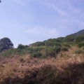 Panoramic plot on the first line in Kamenari, building land in Kotor-Bay, land for sale in Dobrota Montenegro