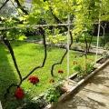 Kotor'da ev, Karadağ satılık ev, Karadağ satılık müstakil ev, Karadağ Ev Fiyatları