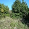 Veličanstveno zemljište sa panoramskim pogledom u selu Bijela, Montenegro real estate, property in Montenegro, buy land in Montenegro