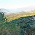 Urbanized plot with sea views in the Boka Kotorska Bay, Montenegro real estate, property in Montenegro, buy land in Montenegro