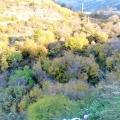 Urbanized plot with sea views in the Boka Kotorska Bay, building land in Region Tivat, land for sale in Bigova Montenegro