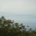 Plot in Blizikuce, Montenegro real estate, property in Montenegro, buy land in Montenegro