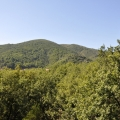 Two bedroom apartment with one bedroom in a new house in a quiet area of Budva - Podmaine, near the restaurant Parma.