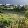 Arsa satılıktır, denize sadece 300 metre mesafededir ve etrafı canlı yeşil bir çitle çevrilidir.