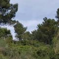 Ulcinj'de ilk sahil şeridi, Karadağ da satılık arsa, Karadağ da satılık imar arsası