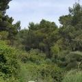 Ulcinj'de ilk sahil şeridi, Montenegro da satılık arsa, Montenegro da satılık imar arsası