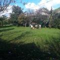 Tivat'ta yeni bir arsa: 1000m2 alan, 0.