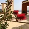 Bar Rivierası'nda Lüks Daire, Karadağ da satılık ev, Montenegro da satılık ev, Karadağ da satılık emlak