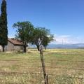 40.000 m2 Satılık Arsa, Montenegro da satılık arsa, Montenegro da satılık imar arsası
