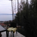 Cozy house in Bijela, Baosici house buy, buy house in Montenegro, sea view house for sale in Montenegro