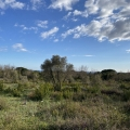 Sea View Plot in Krimovica, Budva, Montenegro real estate, property in Montenegro, buy land in Montenegro