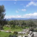 Zukovica'da panoramik deniz manzaralı arsa, Montenegro da satılık arsa, Montenegro da satılık imar arsası