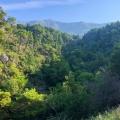 Panoramic plot in Budva, plot in Montenegro for sale, buy plot in Region Budva, building plot in Montenegro