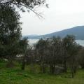 Great big plot in the resort village of Djenovici, Montenegro real estate, property in Montenegro, buy land in Montenegro