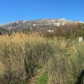 Urbanistic Plot In Becici, Montenegro real estate, property in Montenegro, buy land in Montenegro