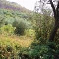 Urbanized Рlot, Budva Riviera, Montenegro da satılık arsa, Montenegro da satılık imar arsası
