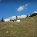 A Large Estate on Zabljak, plot in Montenegro for sale, buy plot in Central region, building plot in Montenegro