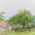 Ülkenin merkezinde bir taş ev ile büyük bir arsa, Karadağ satılık ev, Karadağ satılık müstakil ev, Karadağ Ev Fiyatları