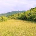 Ülkenin merkezinde bir taş ev ile büyük bir arsa, Cetinje satılık müstakil ev, Cetinje satılık müstakil ev, Central region satılık villa