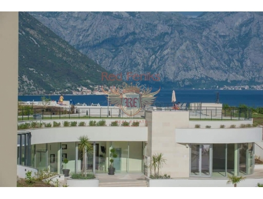 Morinj'de Tek Yatak Odalı Daire, karadağ da kira getirisi yüksek satılık evler, avrupa'da satılık otel odası, otel odası Avrupa'da