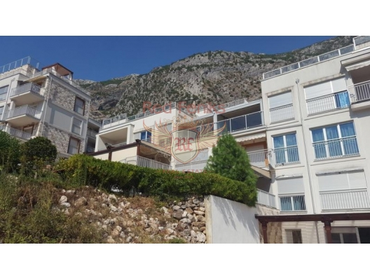 Spacious apartment With a garden in a Complex with a swimming Pool Dobrota, apartment for sale in Kotor-Bay, sale apartment in Dobrota, buy home in Montenegro