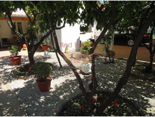 For sale attractive Villa on the coast line Kostanjica, Montenegro real estate, property in Montenegro, Herceg Novi house sale
