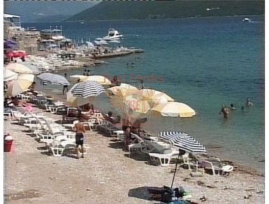 The hotel is located in the town of Herceg Novi, in the most prestigious area of Savina, surrounded by greenery and exquisite Mediterranean plants on the waterfront.