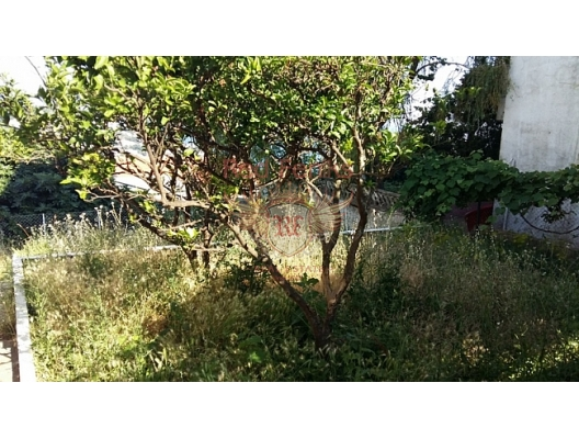 Herceg Novi de yeşil sakin bir ortamda, evin bir parçası satılıyor ( bağımsız bir bölüm şeklinde) .