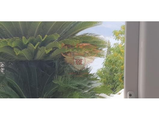 Montenegro real estate, property in Montenegro, flats in Lustica Peninsula, apartments in Lustica Peninsula, apartments in Montenegro, apartments with high rental potential in Montenegro buy, apartments in Montenegro buy, apartments for rent in Krasici buy, apartments for sale in Montenegro, flats in Montenegro sale, apartment for sale in Lustica Peninsula, sale apartment in Krasici, buy home in Montenegro, sea view apartment for sale in Montenegro, buy apartment in Krasici, house in Lustica Peninsula buy