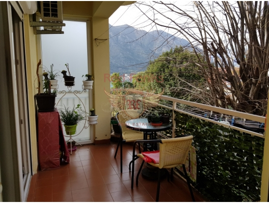 Geniş iki yatak odalı daire, Kotor Eski Kenti Zlatna Niva'ya yayalara yakın bir konumda yer almaktadır.