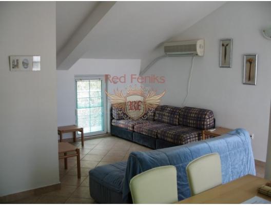 Spacious Apartment in Rafailovici, Montenegro real estate, property in Montenegro, flats in Region Budva, apartments in Region Budva