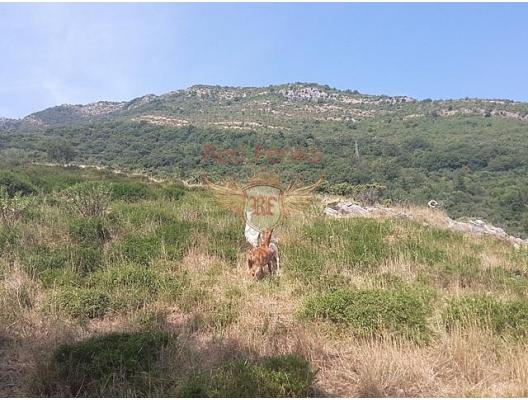 Panoramic plot on the first line in Kamenari, Montenegro real estate, property in Montenegro, buy land in Montenegro