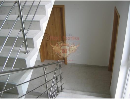 Flats in Zelenika, Montenegro real estate, property in Montenegro, flats in Herceg Novi, apartments in Herceg Novi