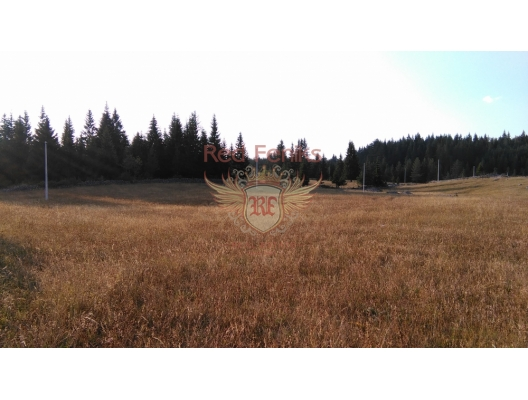 Plot near Tara river, Montenegro real estate, property in Montenegro, buy land in Montenegro